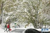 小雪雪满天 孤身在外多着衣