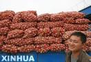济宁蔬菜出口稳坐省内头把交椅 大蒜出口量居全国首位