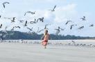 美国:喂食海鸥惹麻烦 群鸟追着女孩跑