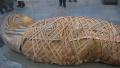 埃及发现两座3500年前墓葬出土木乃伊等文物