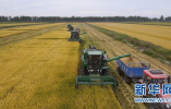 确保土地承包关系稳定长久 带给农民更多制度红利