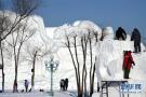 """哈尔滨雪雕比赛中的""""严寒斗士"""""""