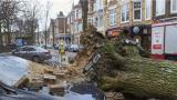 强风暴袭击欧洲 至少9人死亡