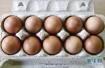 春节后鸡蛋价格普遍下跌 养殖户该怎么办?