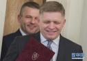 斯洛伐克总理菲佐辞职