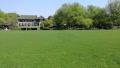 清明小长假 西湖边柳浪闻莺公园10000平米大草坪将重新开放