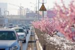 """长春开展""""走遍长春""""专项行动 推进城市精细化管理"""