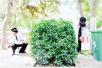 1米长蛇现身郑州公园 专家:无毒也别招惹