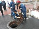 全市首批!济南智能井盖上线 可实时监测地下水位