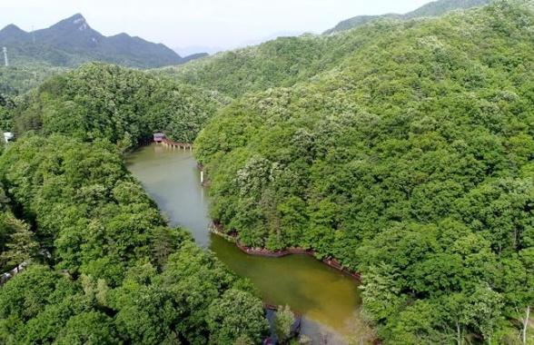 洛阳白云山:山青水秀生态美