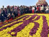 中国开封第36届菊花文化节