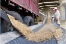 杭州历史上投资最多、规模最大的粮食仓储项目开工了