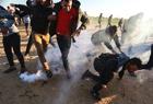 巴以冲突逾百人受伤