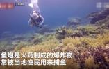 中国游客国外潜水被炸死 这份暑期海岛游安全指南请收好!