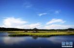 衡水:五个方面重点发力 创建国家节水型城市