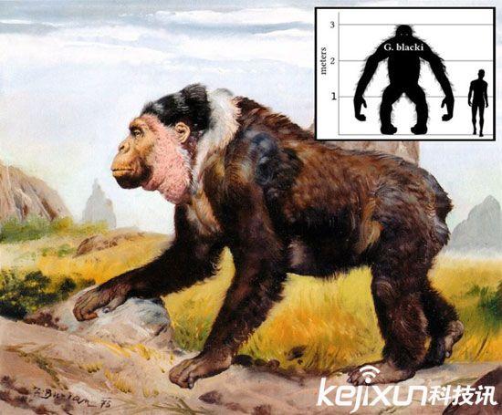 盘点动物史上十大灭绝巨型怪物和十大远古巨兽