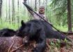 男子刺杀黑熊激怒网友
