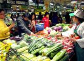 河南蔬菜价格连续下跌八周 预计后期仍有下降空间