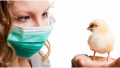 做好日常预防,远离人感染H7N9禽流感