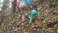 4岁女童随父母游中国:徒步日行15公里 网友质疑(图)