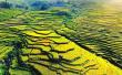 尤溪联合梯田申报全球重要农业文化遗产