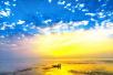 江苏启动生态河湖行动计划 全面推行河长制