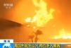 加州野火肆虐 华人讲述亲历现场:随时准备撤离