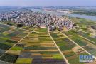 色彩斑谰的锦绣田园