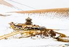 甘肃敦煌迎新年首雪