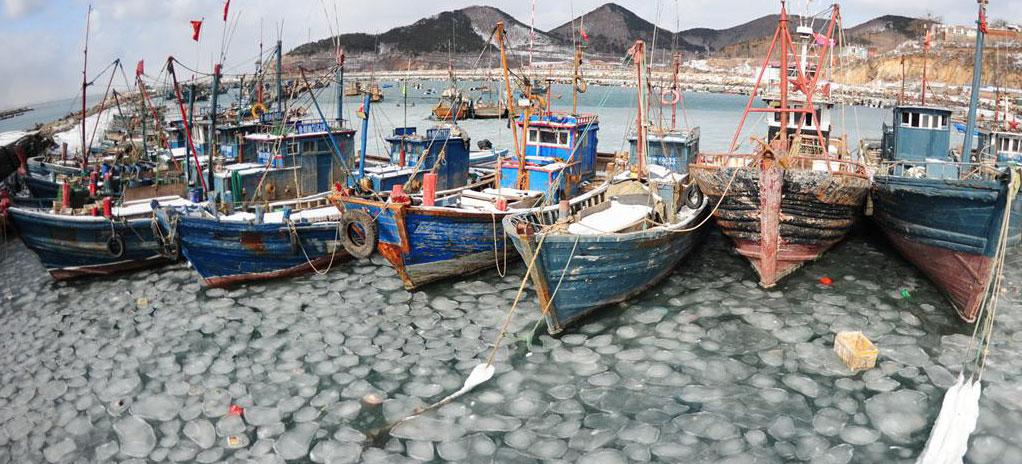 烟台:冰冻渔码头