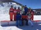 全国自由式滑雪空中技巧比赛河北选手首夺冠