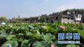 乔新江在商城县调研时强调:让乡村旅游成为脱贫攻坚绿色引擎