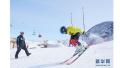 北京市政协调研冬奥会筹办及冰雪运动发展