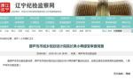 葫芦岛市城乡规划设计院院长吴小舜接受审查调查