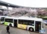 18日起青岛三条公交线路线调整 多站点更名乘车需注意