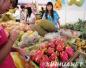 睡前吃火龙果真的对身体健康无益吗?