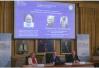 55年仅三位女性获诺贝尔物理奖,女性为何难获诺奖