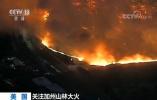 美国加州山林大火迅速蔓延 已致9人遇难 撤离人员升至15万人