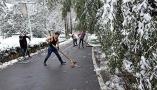 穿背心铲雪照片意外走红 德清村支书获百姓点赞