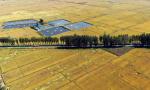 《中国的粮食安全》白皮书发表 权威解读来了