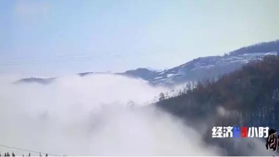河南嵩县黄金冶炼厂违法排污 村民:小鸟喝了河水就死