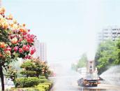 花開南陽 雲賞月季