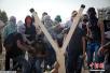 以巴冲突不断 阿巴斯要求制止袭击巴勒斯坦人