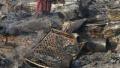 印度仓库起火引发贫民窟煤气罐爆炸