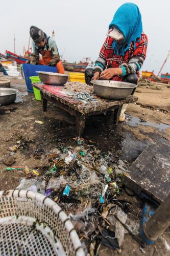 </p><p>岸上的工人分拣海货,挑出的海洋垃圾(画圈处)。
