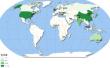 BAT名列中国企业国际传播力前三强 呈现七大特征