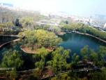 济南动物园制造惊喜