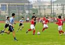 江苏要积极参与申办世界杯 将建3000所足球学校
