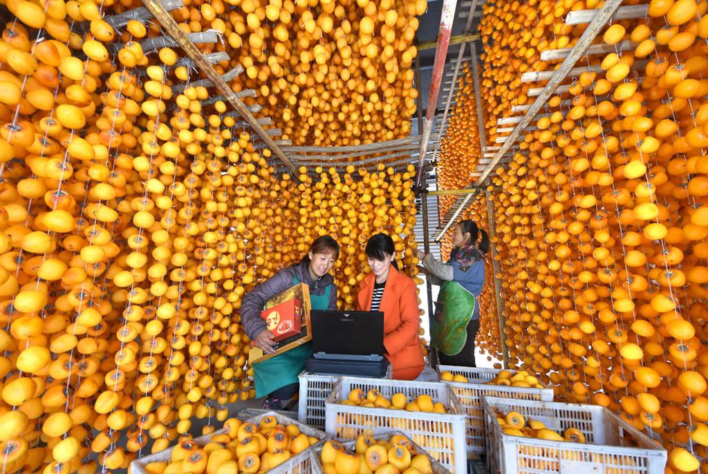 山东沂源:果农网销果品增效益