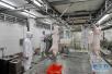 山东猪肉价格连续第五周下跌 生猪价格已止跌反弹